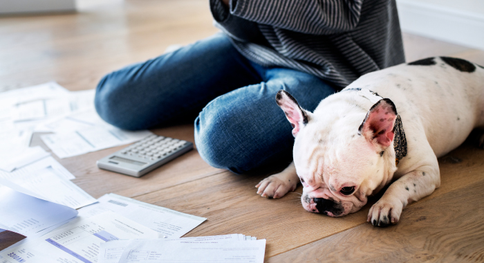 person sitting with their dog on the floor looking at paperwork and a calculator