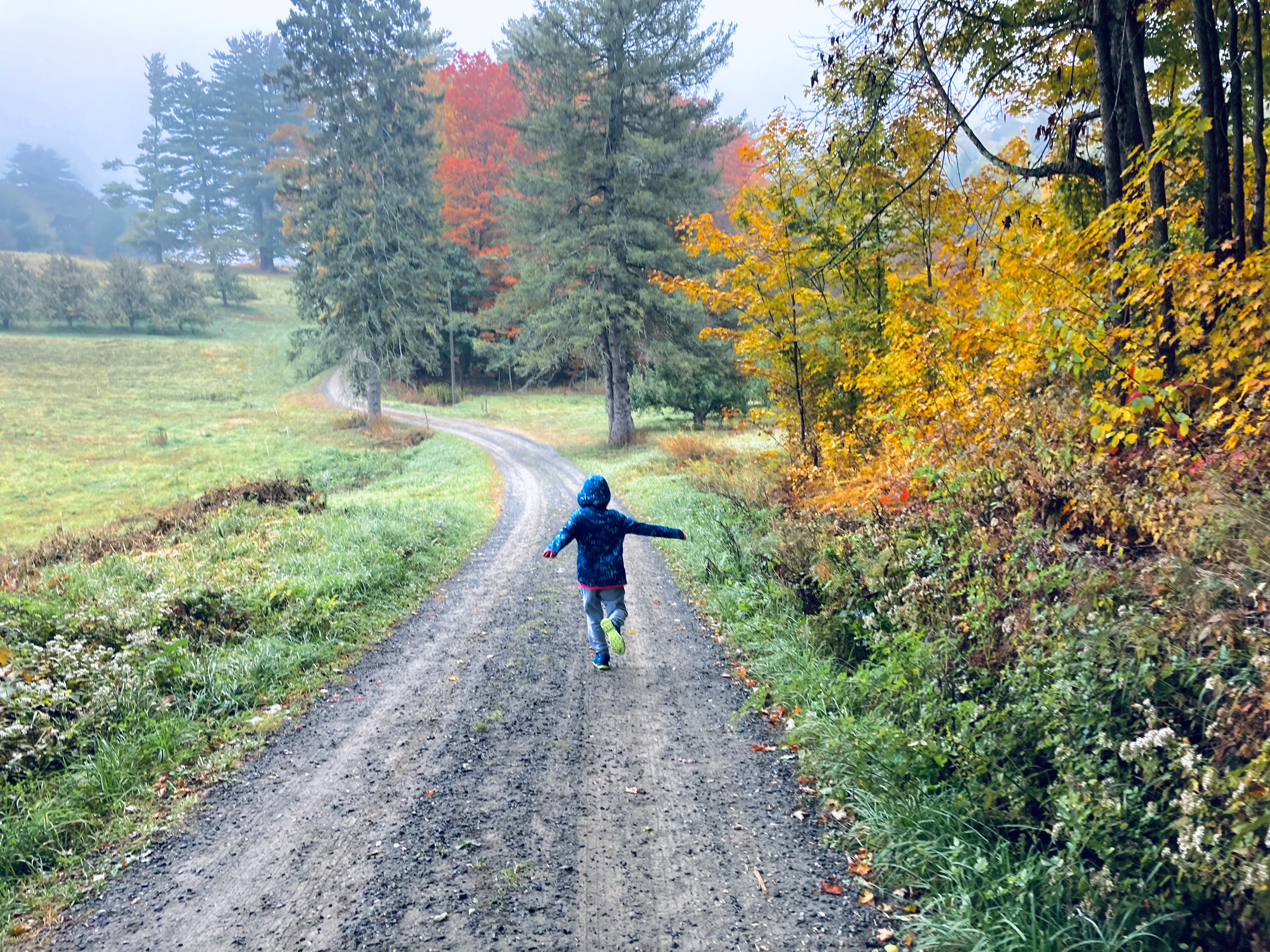 Child running down a bath bordered by fall foliage in Vermont