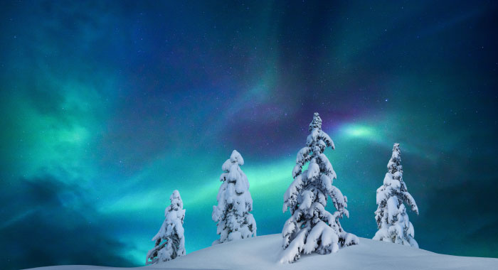 winter-cd